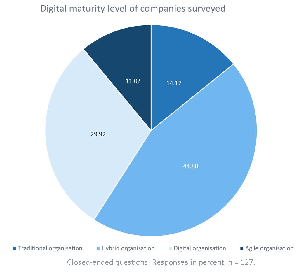 Digital maturity level of companies surveyed