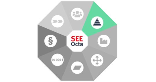 SEEOcta: The Agile Organisation