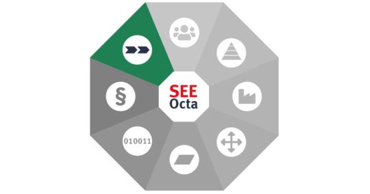 SEEOcta: Business Process Reengineering (BPR)