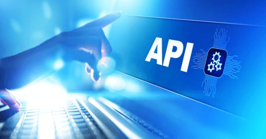Die SEEBURGER BIS API Lösung